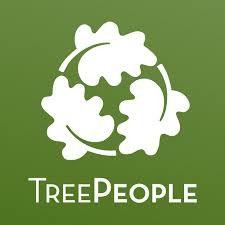 leader landscaping tree people